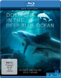 Dolphins in the Deep Blue Ocean - New Edition